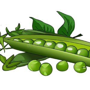Side of Peas